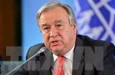 Liên hợp quốc kêu gọi hướng tới tương lai không có phát thải ròng