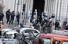 EU lên kế hoạch mở rộng nhiệm vụ chống khủng bố của Europol