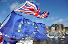 Anh gặp rủi ro pháp lý nếu thỏa thuận EU-Anh được phê chuẩn sau 31/12