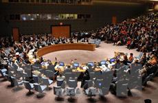 5 nước ủy viên không thường trực HĐBA báo cáo kết quả làm chủ tịch