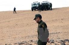 Vấn đề chống khủng bố: Algeria bắt giữ một phần tử nguy hiểm