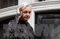 Đức bày tỏ lo ngại về việc dẫn độ người sáng lập WikiLeaks sang Mỹ