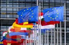 Hoạt động chế tạo ở khu vực Eurozone kết thúc năm 2020 đầy ấn tượng
