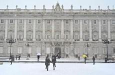 Thủ đô của Tây Ban Nha chìm trong tuyết rơi dày nhất nửa thế kỷ