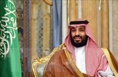 Saudi Arabia lên kế hoạch xây dựng thành phố sinh thái không khí thải