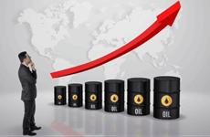 Giá dầu châu Á tiếp tục tăng trong phiên chiều ngày 13/1