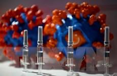 Pháp phản đối áp dụng quy định về GMO đối với cây trồng chỉnh sửa gene