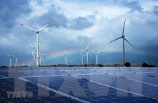 Indonesia lỡ hẹn với mục tiêu năng lượng xanh do dịch COVID-19