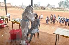Dịch COVID-19: Tỷ lệ bệnh nhân tử vong ở châu Phi cao hơn trung bình