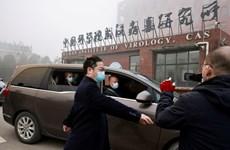 Chuyên gia Tổ chức Y tế thế giới nhận định về Viện Virus Vũ Hán