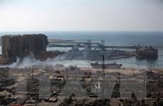 Hơn 50 container hóa chất nguy hiểm tại cảng Beirut đã được xử lý