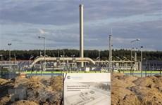 Bloomberg: Chính phủ mới ở Đức sẽ từ bỏ Dòng chảy phương Bắc 2