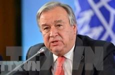 TTK LHQ kêu gọi hợp tác toàn cầu để đưa thế giới trở lại đúng hướng