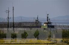 Mỹ đề cao vai trò của Hàn Quốc và Nhật Bản trong vấn đề Triều Tiên
