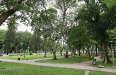 TP.HCM trồng cây xanh để chống biến đổi khí hậu, bảo vệ môi trường