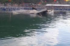 Hỏa hoạn thiêu rụi một nhà hàng bè nổi trên vịnh Vũng Rô, Phú Yên