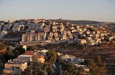 Dịch COVID-19: Israel dỡ bỏ lệnh cấm nhập cảnh với người nước ngoài