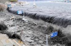Chính phủ Nhật thông qua chính sách mới về tái thiết khu vực thảm họa