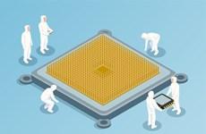 Hàn Quốc sẽ đầu tư hơn 176 triệu USD để phát triển công nghệ chip ôtô