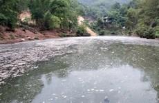 Bến Tre: Phạt hành chính doanh nghiệp gây ô nhiễm môi trường