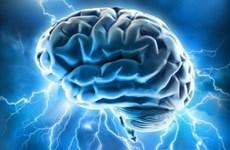 Phát hiện phương pháp mới ngăn chặn sự lây lan của tế bào ung thư não