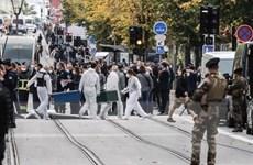 Vụ tấn công bằng dao tại Pháp: Cảnh sát bắt 3 đối tượng có liên quan