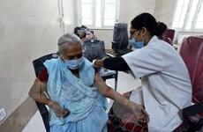 Vaccine nội địa của Ấn Độ có thể vô hiệu hóa đột biến kép