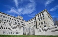 WTO nêu những yếu tố quyết định chi phí thương mại toàn cầu