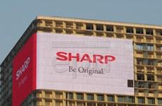 Lợi nhuận ròng của Sharp tăng gấp 4 lần so với tài khóa trước
