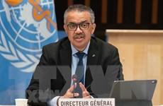 """Tổng giám đốc WHO cảnh báo tình trạng """"phân biệt chủng tộc"""" về vaccine"""