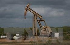 Giá dầu thế giới phiên 18/5 rời khỏi mức cao của hai tháng