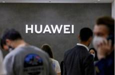 Huawei chuẩn bị triển khai hệ điều hành riêng thay thế Android