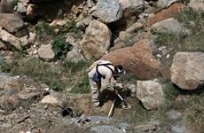Taliban bắn chết 10 nhân viên của tổ chức phá bom mìn HALO Trust