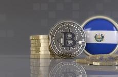 Động thái của IMF khi El Salvador cho phép dùng bitcoin như tiền thật