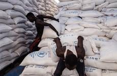 LHQ phân phối 135 triệu USD cứu trợ nhân đạo cho 12 nước