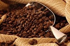 Caffeine có tác dụng chống lại khối u ác tính ở người