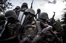 CHDC Congo: 10 người thiệt mạng trong vụ tấn công của phiến quân