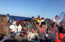 Hải quân Hoàng gia Maroc giải cứu 204 người di cư bất hợp pháp