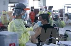 Các chuỗi lây nhiễm ở thủ đô Vientiane cơ bản được cắt đứt