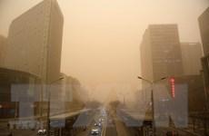 Bão cát tại Mỹ và Trung Quốc khiến nhiều người thiệt mạng