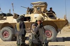 Afghanistan: Đụng độ tiếp diễn ở ngoại ô thành phố Herat