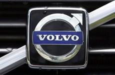 Gần 600 xe Volvo tại thị trường Việt Nam bị triệu hồi do lỗi cầu chì
