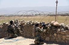 Chưa xem xét việc thiết lập lực lượng gìn giữ hòa bình tại Afghanistan