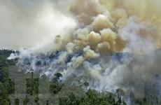 Giới khoa học lo ngại sẽ chứng khiến thêm nhiều thảm họa thiên nhiên