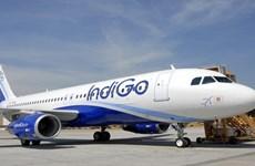 Hãng hàng không Ấn Độ IndiGo áp dụng hộ chiếu sức khỏe điện tử