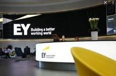Ernst & Young chi hơn 10 triệu USD để dàn xếp cáo buộc sai phạm