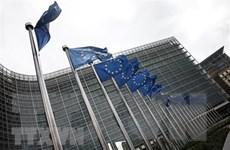 Eurozone công bố số liệu khả quan về thặng dư thương mại
