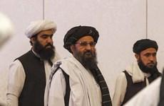 Taliban muốn thiết lập quan hệ ngoại giao và thương mại với các nước