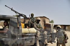 Hàng chục người thiệt mạng trong các vụ tấn công tại Nigeria và Niger