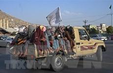 Taliban khẳng định sẽ trấn áp các cuộc tấn công của IS